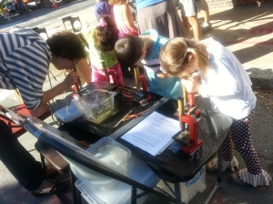 Photo of kindergarteners and teacher looking through microscopes courtesy of D. Jamas.
