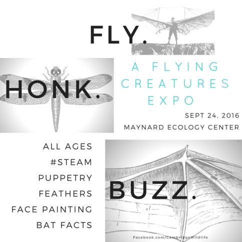 Insta.FLY.Honk.BUZZ.9.24.16