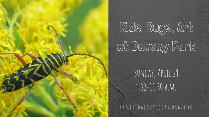 Kids, Bugs, Art at Danehy Facebook Event