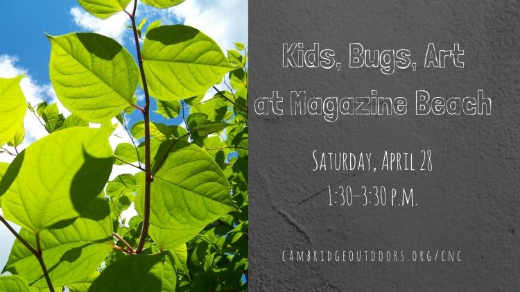Kids, Bugs, Art at MB Facebook Event